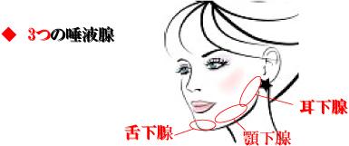 口の機能を支える化粧