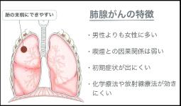 野際陽子さんが患った肺腺がん