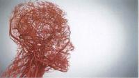 ゴースト血管が危ない
