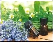 香りの健康法